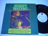 Muddy Waters The Original Hoochie Coochie Man 1981 Stereo Import LP VG++