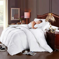 Deluxe and Authentic 100% Pure Cotton Down Alternative Comforter (Winter Weight)