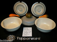 Tupperware 5pc Ultra 21 Plus 2 Qt Casserole ~Oven, Freezer, Fridge & Microwave