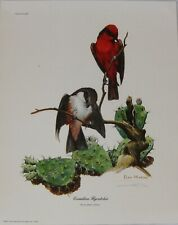 "Ray Harm 15 x 12 Print ""Vermilion Flycatcher"" Signed Print"