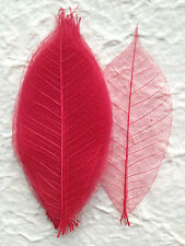 25 Skeleton Leaves Red see through leaf Christmas Wedding Invitations Scrapbook