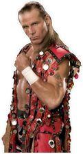 Wall Sticker Fathead  WWE Wrestling Shawn Michaels