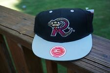 Wisconsin Timber Rattlers Midwest League Youth Adjustable cap