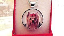 YORKSHIRE TERRIER PHOTO PENDANT 18  INCH SILVER PLATED CHAIN GIFT BOX BIRTHDAY