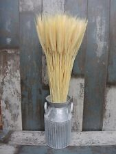 100 STEMS DRIED WHEAT/RYE BUNCH FOR FLOWERS ARRANGING READY TO USE BLEACHED  20""
