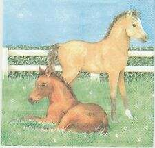 2 Serviettes en papier Poulain Cheval Decoupage Paper Napkins foal Horses