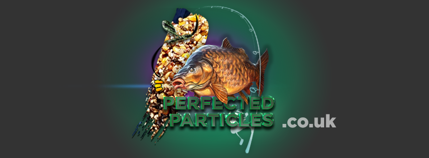perfected particles