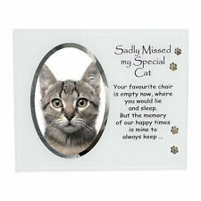 David Fischhoff Glass Photo Frame with Wording Pet Memorial Memory - Special Cat