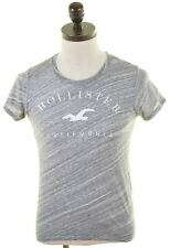HOLLISTER Mens Graphic T-Shirt Top Small Grey Cotton  MP77