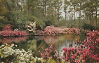 *(Q)  Mobile, AL - Bellingrath Gardens - Mirror Lake and Surrounding Gardens