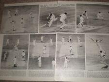 Photo article Cricket England Australia draw Trent Bridge 1964 ref AY