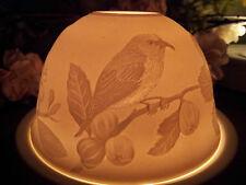 Windlicht Starlight Vogel Mönchgrasmücke Singvögel Feige Lithophanie Porzellan