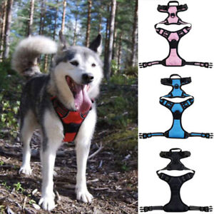 Pet Harness Chest Strap for Big Large Medium Small Dog Harness Pet Products