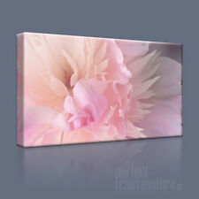 MISTY FLOWERS BEAUTIFULLY DECORATIVE CANVAS PRINT PICTURE UPGRADE to 120x56cm