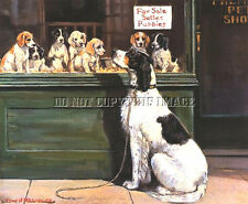 ANTIQUE 8X10 PHOTOGRAH REPRINT MAMA ENGLISH SETTER LOOKING AT HER PUPS FOR SALE