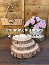 LOWEST PRICE Wedding Centrepiece Larch Wood Slice Small Slices 17-20cm  Log 🍾