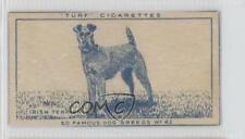 1949 Turf Famous Dog Breeds Tobacco #42 Irish Terrier Non-Sports Card 0f3