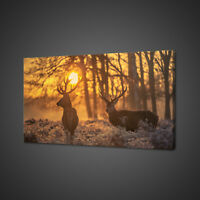 STUNNING RED DEER FOGGY FROSTY MORNING CANVAS PRINT WALL ART PICTURE PHOTO
