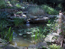 "X -LARGE PRO GRADE 21' X 21' POND KIT - 26"" WATERFALL"