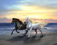 5D DIY Diamond Painting Couple Horse Embroidery CrossStitch Kit DIY Decor.