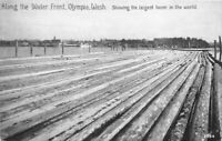 C-1910 Logging Lumber Waterfront Olympia Washington Postcard Pacific 13056