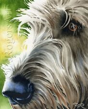 Irish Wolfhound Dog Watercolor 8 x 10 Art Print by Artist Djr