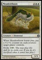 4 Meadowboon - LP - Morningtide - mtg - 4x x4