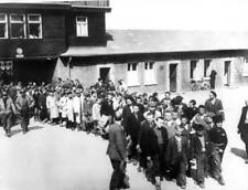 OLD WWII PHOTO Concentration Camp Buchenwald Liberation