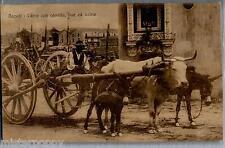 NAPOLI Costumi carro con Cavallo Bue ed Asino PC Viaggiata 1928