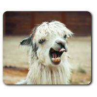 Computer Mouse Mat - Awesome Llama Alpaca Face Office Gift #16712