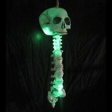 "Lighted Human Skeleton Skull Spine LED Green Glowing Lights Halloween Prop 20"""
