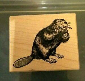 VTG Collectible PSX Designs Beaver F1554 Wood Mounted Rubber Stamp 1995