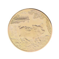 Year of the Pig Gold Plated  Chinese Zodiac Souvenir Coin Collectibles Gifts GX