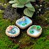 Eg _3pz. Piscina Miniatura Ornamento per Giardino Bonsai Casa Delle Bambole