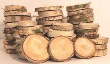 BIRKE - Holzscheiben Astscheiben Baumscheiben 100 Stück 2-4 cm