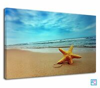 Nautical Starfish Print For Bathroom Beach Fish Canvas Print Wall Art Picture