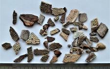 Devonian fish armor fragments. RARE!