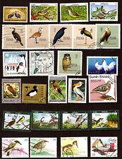 Tous pays OISEAUX-BIRDS: corbeaux,cigognes,pélicans,pingouins,cormoran 1m271A