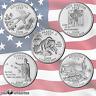2008 P & D State Quarter Set From Mint Rolls 10 Quarter Set Uncirculated