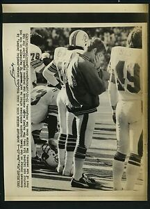 Bob Griese Lot of 7 Press Photos Miami Dolphins Purdue