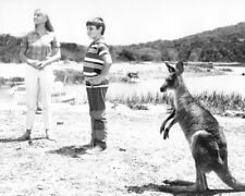 Skippy the Bush Kangaroo (1969) Liza Goddard, Gary Pankhurst 10x8 Photo