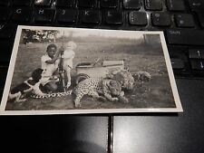 amazing Kenya Hunter ! dog ,leopard,puppy,pedal car  OUT OF AFRICA  WW2 ERA PHOT