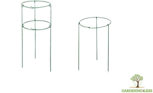 Ring Frame Metal Plant Height Supports Herbaceous Peony 61cm 91cm x 40cm Dia