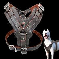Heavy Duty Genuine Leather Dog Harness Adjustable Pet Vest for Labrador Pit Bull