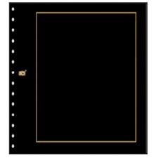 Safe 10er Packung  Karton Blankoblätter Nr. 793