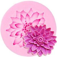 Moules à gâteau en silicone à la fleur de lotus moule à chocolat pour la cuis vx