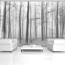 Tapete Fototapeten Tapeten Natur Wald Baum Nebel Blick Herbst  14N11223P