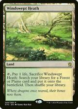Mtg Windswept Heath x1 - Khans of Tarkir Fetchland - Magic the Gathering