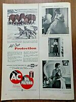 1953 AC  Oil Filters Ad Musk OX & Wolves