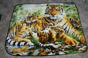"""Soft Plush Throw/Blanket 45"""" X 57"""" Tiger and Blue Eyes Cubs The Northwest Co EUC"""